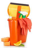 Cleaning products in  bucket — Stock Photo