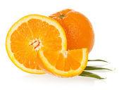 The macro foto of the cut orange — Stock Photo