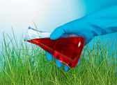 Hand pours  a flask with liquid on grass — Stock Photo