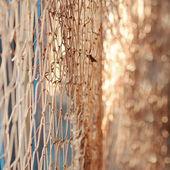 морская сетка — Стоковое фото