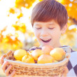 Happy boy with fruits in basket  — Stock Photo