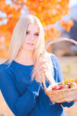 Girl with basket full of apples outdoors — Foto Stock