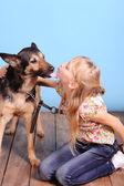 Little girl with shepherd — Stock Photo