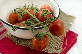Haufen tomaten — Stockfoto