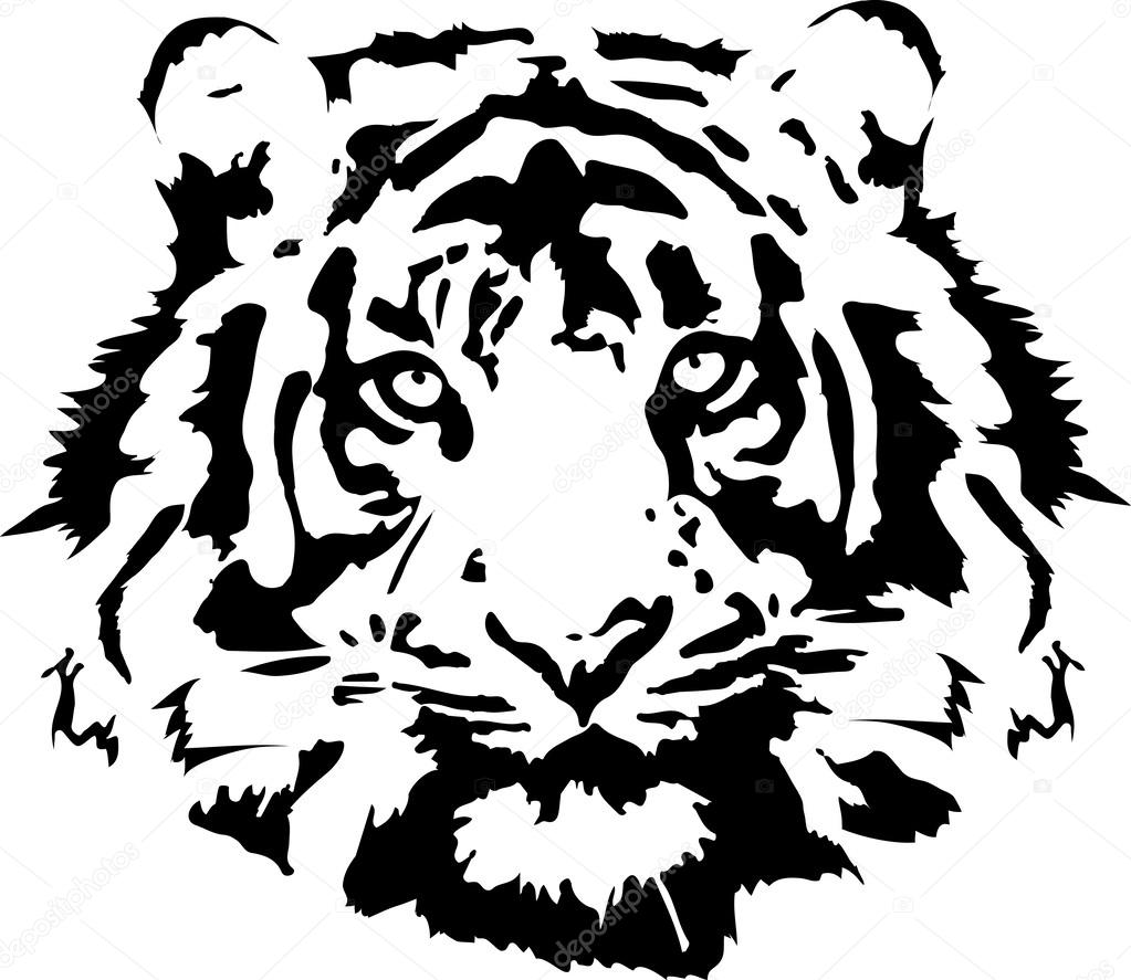 tiger kopf schwarz stockvektor crattos 40631501. Black Bedroom Furniture Sets. Home Design Ideas