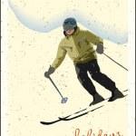 Mountain skier — Stock Vector