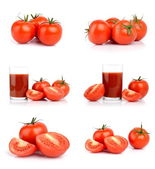 Set of tomatoes isolated on white — Stock Photo