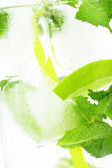 Icy background macro drink ice cubes mint limes — Foto Stock