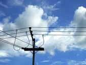 Elektrisk kabel i den blå himlen — Stockfoto