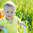 Boy one year. A child plays on the green grass — Stock Photo