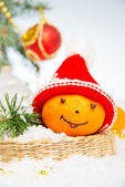 Tangerines. Christmas Collection — Stock Photo