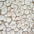 Cracked soil ground into the dry season. — Stock Photo