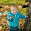 Child walking in the park — Stock Photo #37880301
