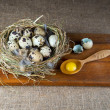 Stock Photo: Quail eggs
