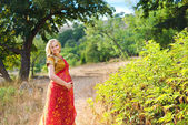Pregnant woman in the park.Indian girl in dress — Stock Photo