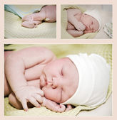 Newborn collage — Foto de Stock
