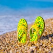 Things for the beach towel, sunscreen, flip flops — Stock Photo #42213009