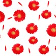Background and texture of natural color. Floral background. Red gerbera on white — Stock Photo #47638819