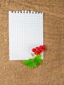 Kitchen table sheet recipes, menus — ストック写真