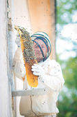 Beehive beekeeper inspects — Stock Photo