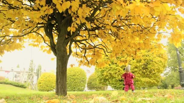 Una niña pequeña en el parque — Vídeo de stock