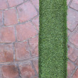 Artificial grass — Stock Photo #32055585