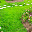 Garden stone foot path with grass  — Stock Photo