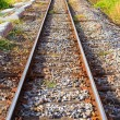 Railway track — Stock Photo #32117331