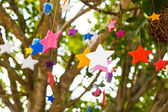 Colorful candle stars on tree — Stock Photo