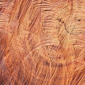 Surface wood log texture background — Foto de Stock