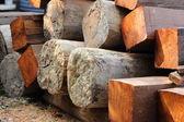 Logs prepare for house construction — Stok fotoğraf