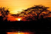 Sunset landscape on water field — Stock Photo