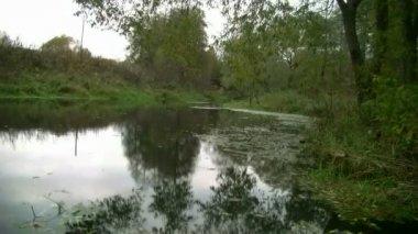 Sonbahar nehri üzerinde — Stok video