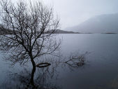 A loch in the Scottish Highlands — Stock Photo