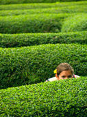 A girl in a maze — Stock Photo