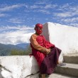 Постер, плакат: Buddhist monk with spiderman mask on