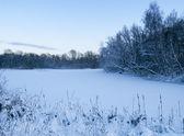 Winterlandschaft mit einem gefrorenen See — Stockfoto