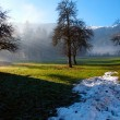 Stock Photo: Melting snow in Tirol in AustriAlps