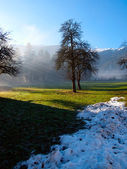 Melting snow in Tirol in the Austrian Alps — Stock Photo
