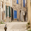 Typical French alley in a small village with a cat — Stock Photo