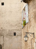 Typical French windows in the small village Balazuc, France — Stock Photo