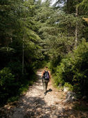 Young woman hiking in a forest in France — Stock Photo