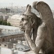 Gargoyle at Notre-Dame Cathedral, Paris — Stock Photo #37002637