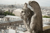 Gargoyle at Notre-Dame Cathedral, Paris — Stock Photo