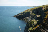 Cliffwalking Between Bray and Greystones, Ireland — Stock Photo