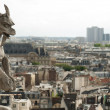 Gargoyle at Notre-Dame Cathedral, Paris — Stock Photo #37123149
