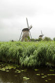 Windmill at Kinderdijk, Netherlands — Stock Photo