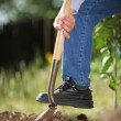 Digging soil — Stock Photo