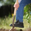 Digging soil — Stock Photo #32419505