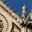 Notre Dame Cathedral detail — Stock Photo